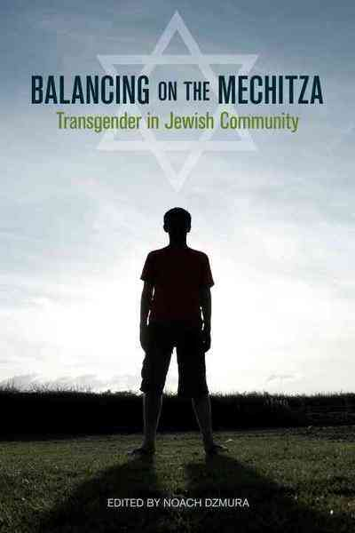 Balancing on the Mechitza Book Cover